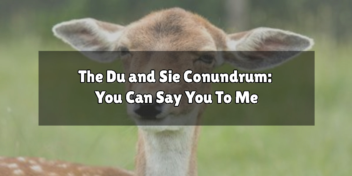 The Du and Sie Conundrum: You Can Say You To Me